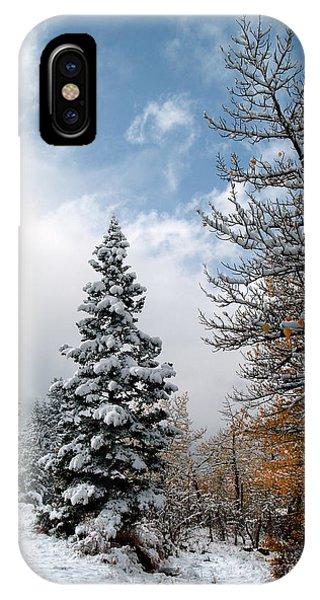 Autumn Winter Colors 2 IPhone Case