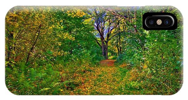 Autumn Woodland IPhone Case