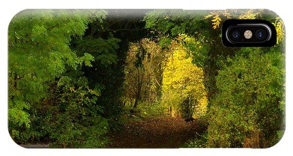 Autumn Woodland Walk IPhone Case