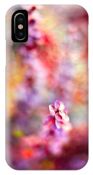 Autumnal Berberis 2 IPhone Case