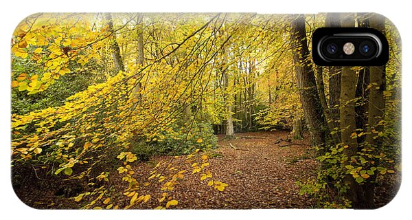 Autumnal Woodland II IPhone Case