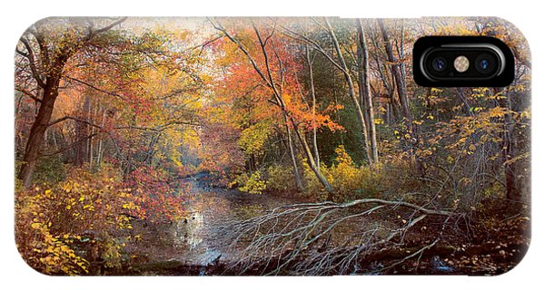 Autumns Afternoon IPhone Case