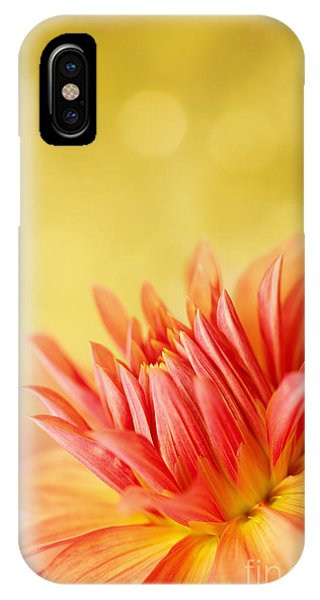 Autumns Calling Card IPhone Case
