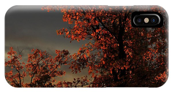 Autumn's First Light IPhone Case