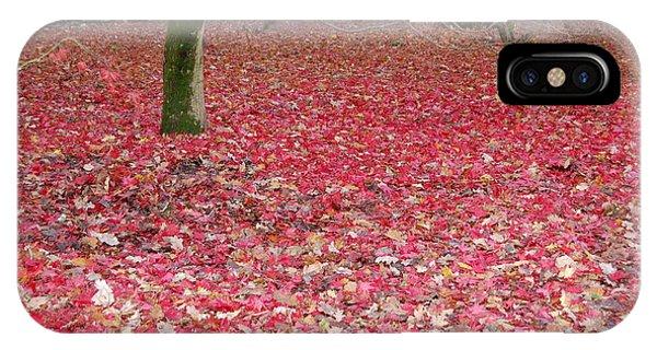 Autumn's Gift IPhone Case