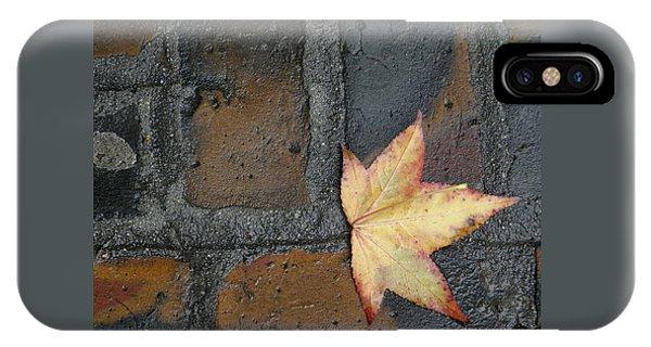 Autumn's Leaf IPhone Case