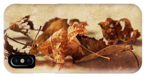 Autumn's Leavings IPhone Case