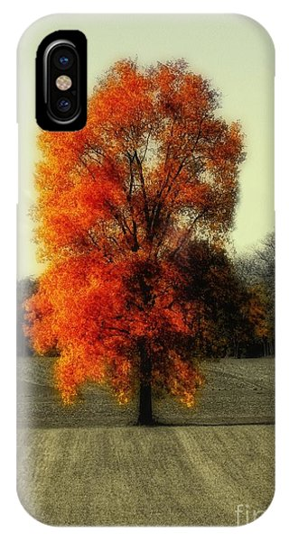 Autumn's Living Tree IPhone Case
