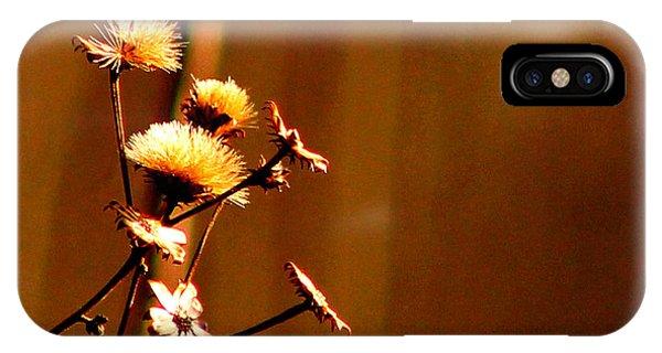 Autumn's Moment IPhone Case