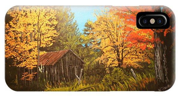 Autumns Rustic Road IPhone Case