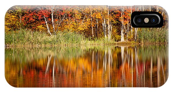 Autumns True Colors IPhone Case