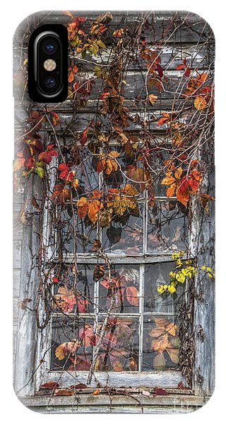 Autumn's Window Curtains IPhone Case