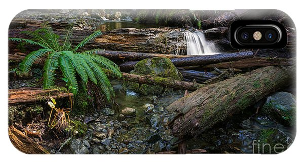 Avatar Grove Creek Bed IPhone Case