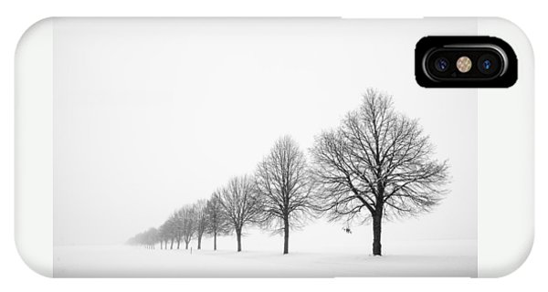 Avenue With Row Of Trees In Winter IPhone Case