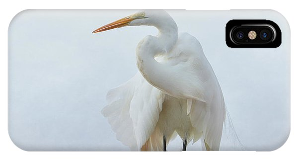Avian Angel IPhone Case