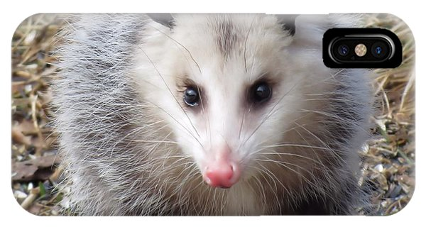 Awesome Possum IPhone Case