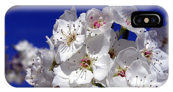 Awsome Blossoms Phone Case by Gerry Childs
