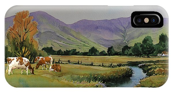 Ayrshire Cattle In Langdale Phone Case by Anthony Forster