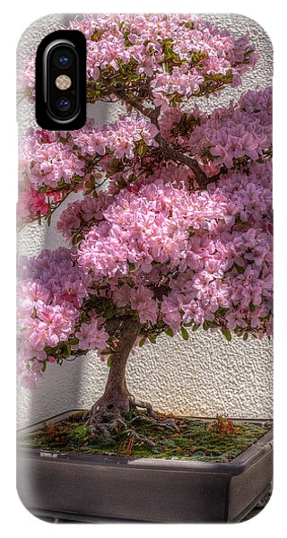 Azalea Bonsai IPhone Case