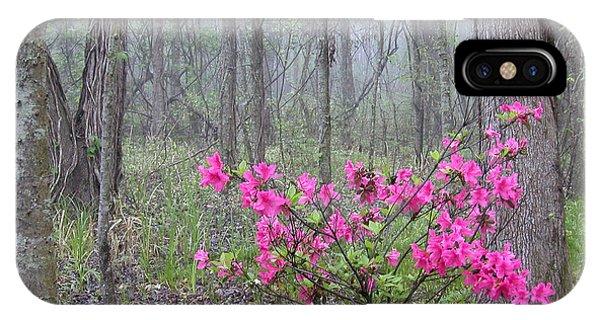 Azaleas In Fog IPhone Case