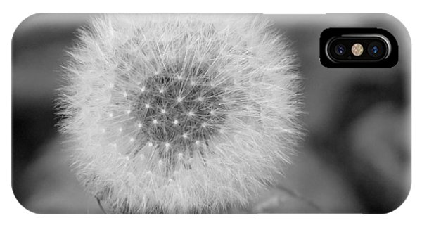 B And W Seed Head IPhone Case