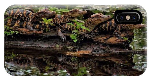 Baby Alligators Reflection IPhone Case