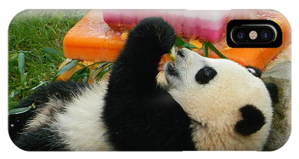 Baby Bao Bao's First Birthday IPhone Case