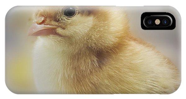 Baby Chicken IPhone Case