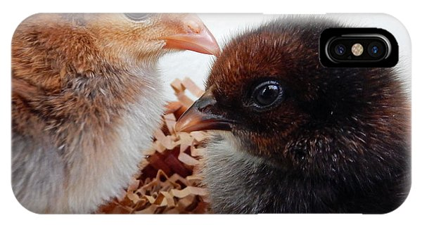 Baby Chicks IPhone Case