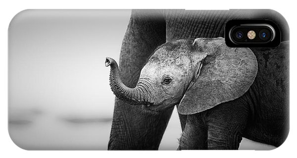 Reach iPhone Case - Baby Elephant Next To Cow  by Johan Swanepoel