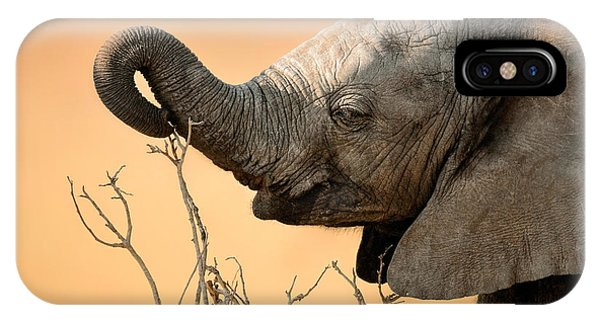 Reach iPhone Case - Baby Elephant Reaching For Branch by Johan Swanepoel