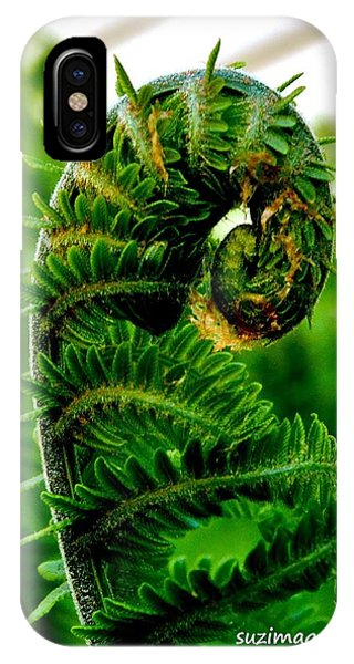 Baby Fern IPhone Case