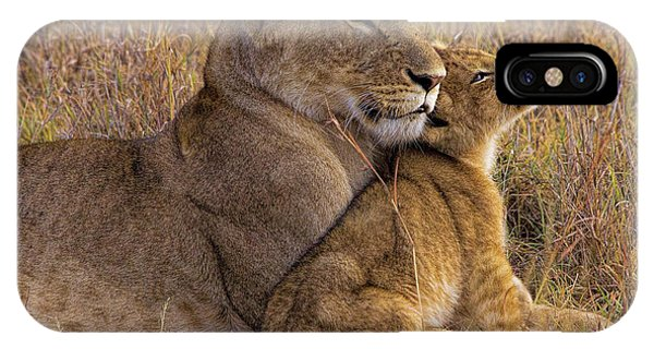 Tender iPhone Case - Baby Lion With Mother by Henry Jager