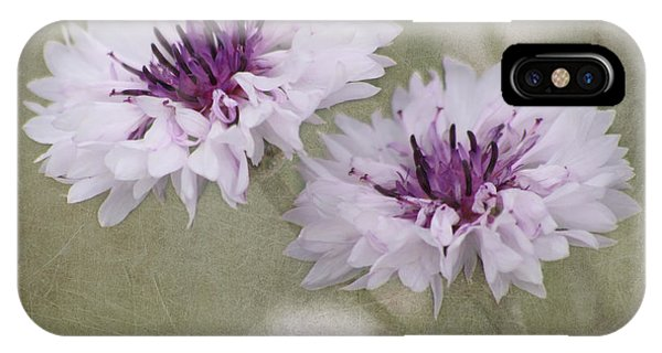 Bachelor Buttons - Flowers IPhone Case