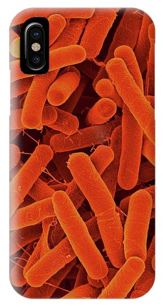 Organic Matter iPhone Case - Bacillus Atrophaeus by Dennis Kunkel Microscopy/science Photo Library