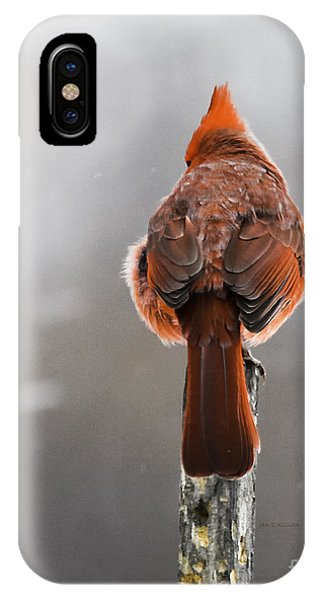 Back At You IPhone Case