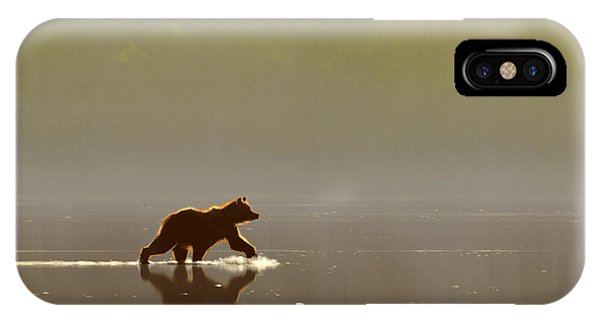 Back Lit Grizzly IPhone Case