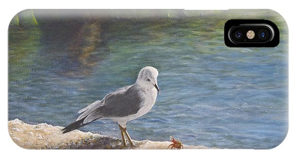 Seagull iPhone Case - Back Off by Cindy Lee Longhini
