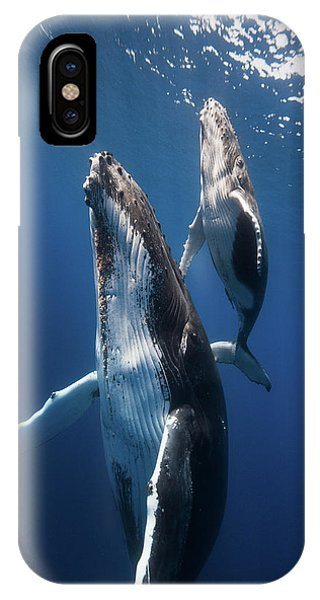 Back To The Surface Phone Case by Barathieu Gabriel