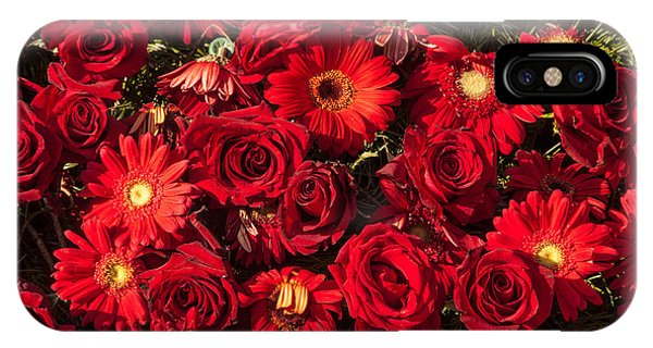 Background Of Red Roses And Daisies IPhone Case
