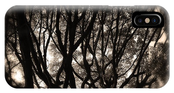 Backlit Branches Of A Majestic Tree II IPhone Case