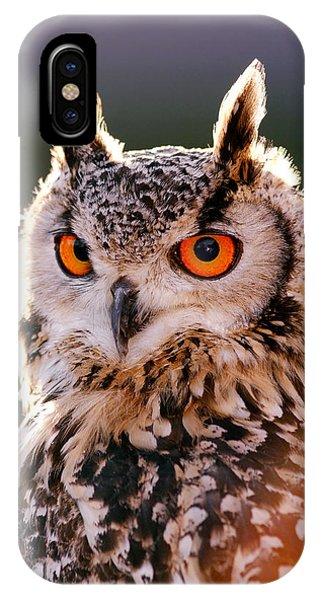 Backlit Eagle Owl IPhone Case