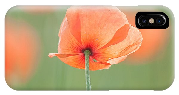 Backlit Poppies IPhone Case