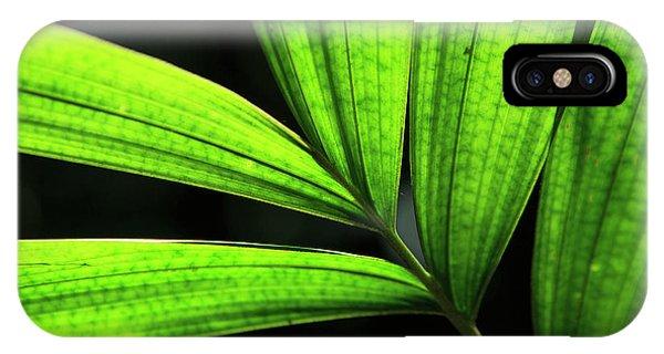 Far North Queensland iPhone Case - Backlit Rainforest Plants Create by Paul Dymond