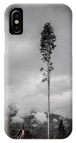 Lone Tree Landscape  IPhone Case