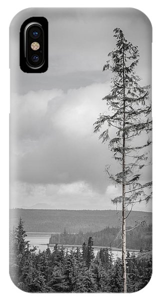 Tall Tree View IPhone Case