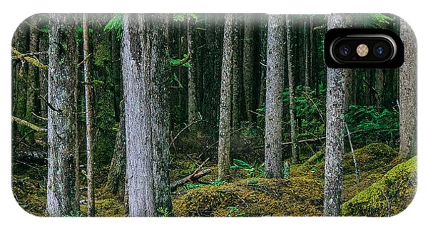 Inside View Backroad Forest IPhone Case