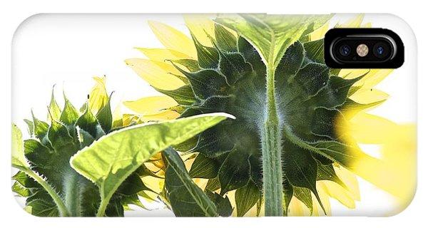 Backside Of Sunflower IPhone Case
