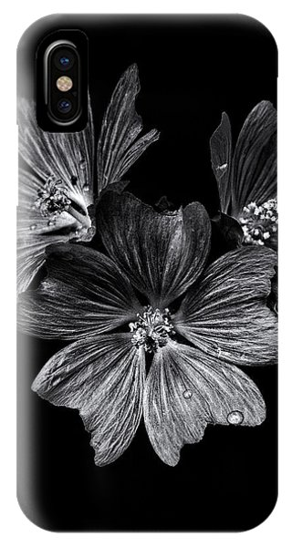 IPhone Case featuring the photograph Backyard Flowers In Black And White 11 After The Storm by Brian Carson