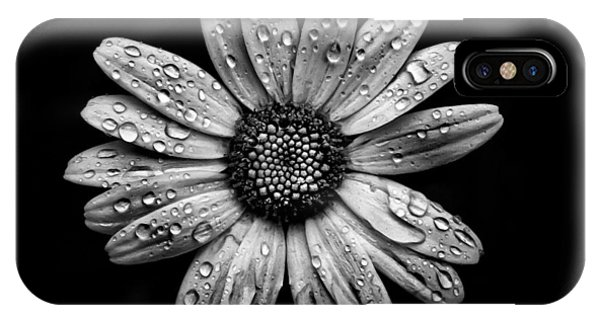 Backyard Flowers In Black And White 16 After The Storm IPhone Case